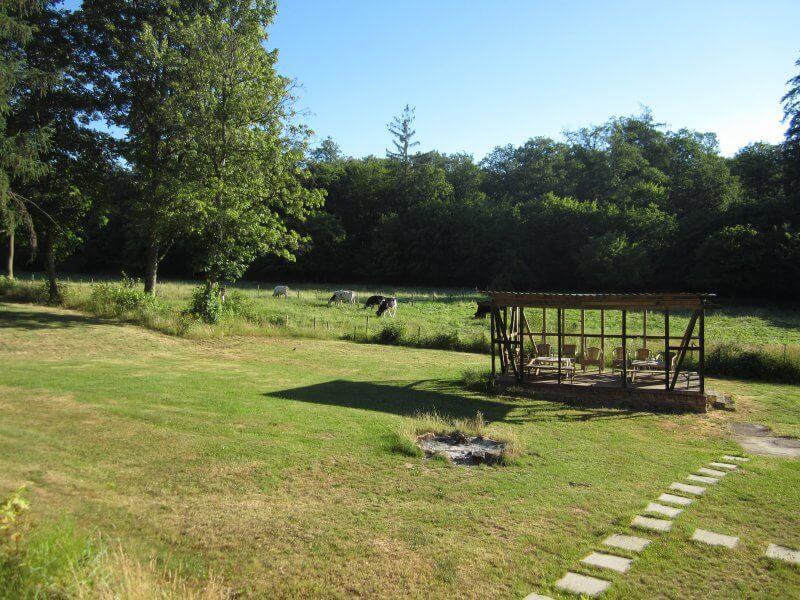 Verbesserungen im Hintergarten Waldfriede