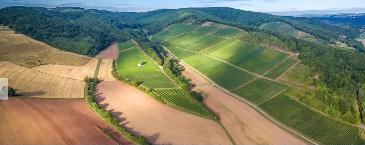 Rheingrafenberg Wine Society